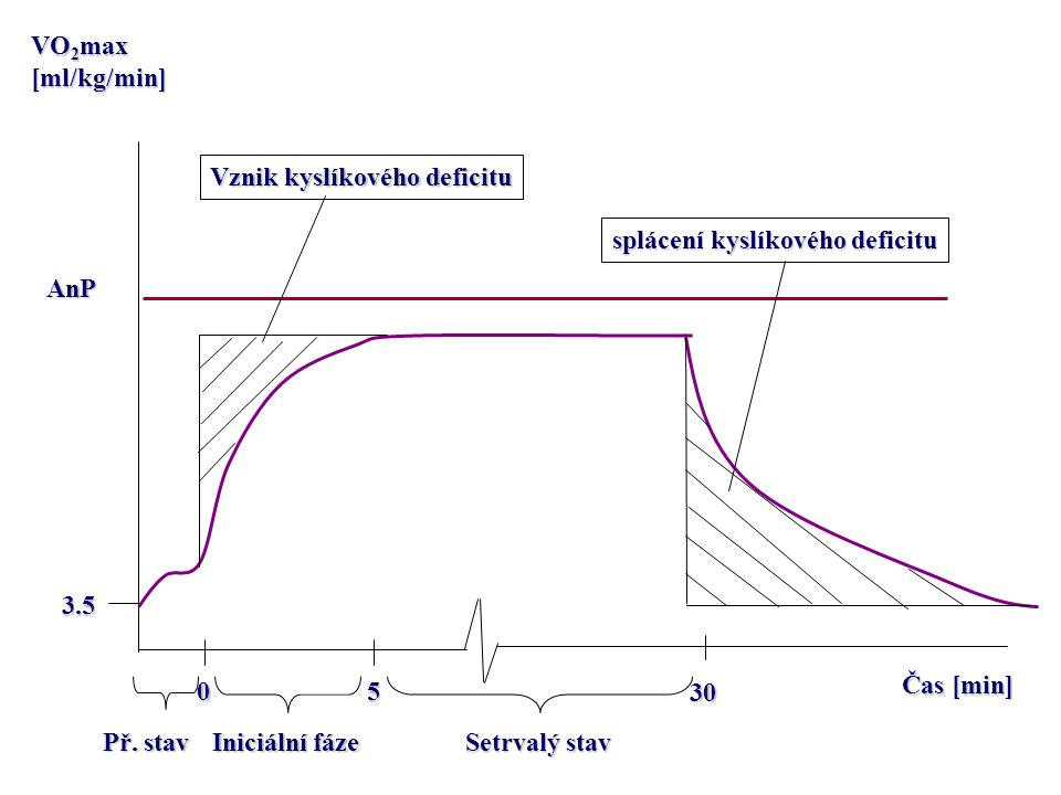 VO2max [ml/kg/min] Vznik kyslíkového deficitu. splácení kyslíkového deficitu. AnP. 3.5. Čas [min]